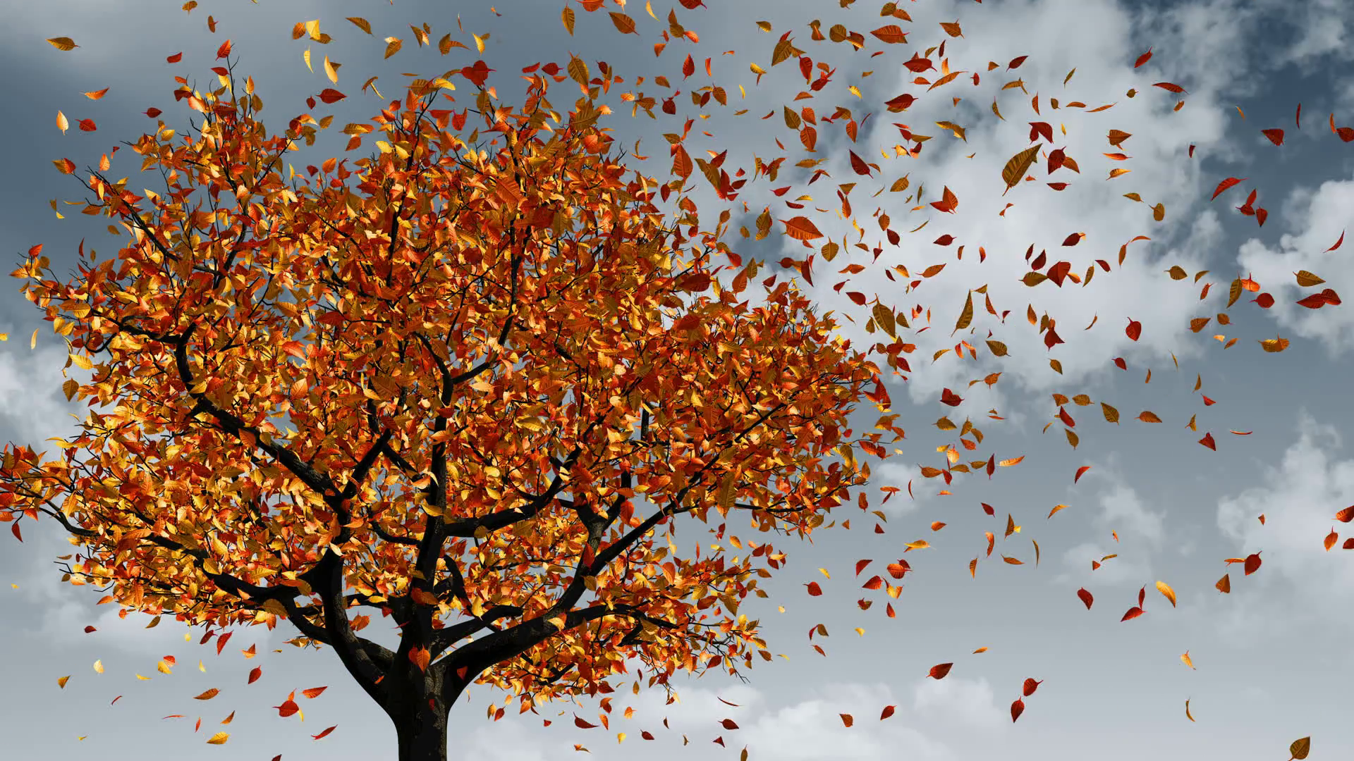 concept-of-changing-of-the-seasons-from-spring-to-autumn-leaves-appear-on-the-tree-they-turn-yellow-and-then-fall-off-3d-animation-4k-3840x2160_b0f3muokye_thumbnail-full13